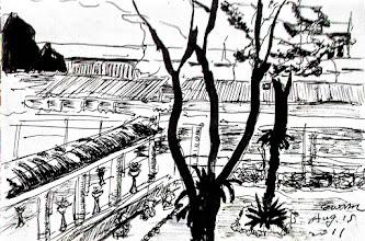 Photo: 樹2011.08.15鋼筆 一個月前我畫了大概的輪廓就到別的勤區去了,沒想到再回來時樹上的新芽竟已長成了新枝,對照著先前畫的痕跡,就這麼無意間記錄了樹的成長!