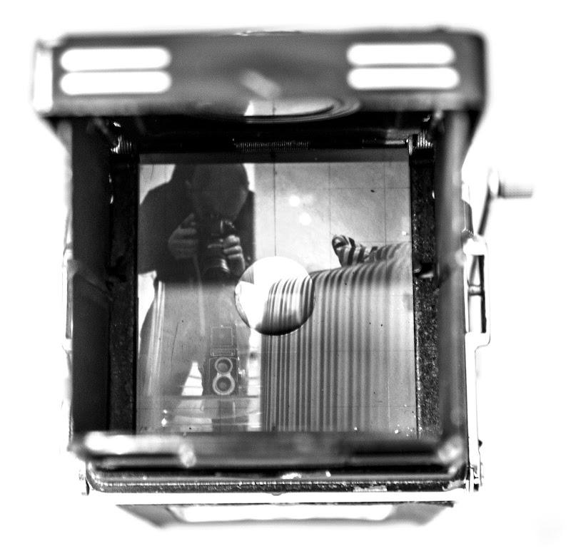 autoritratto 6x6 di LorenzoFaraoni