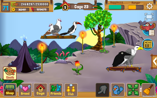 Bird Land Paradise: Pet Shop Game, Play with Bird  {cheat|hack|gameplay|apk mod|resources generator} 5