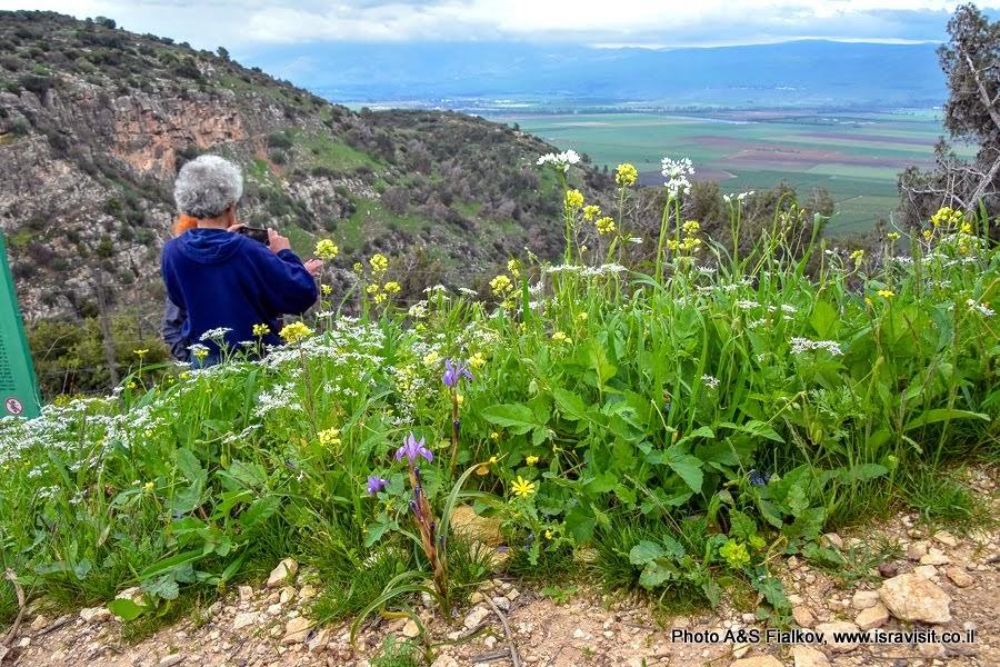 Экскурсия на север Израиля. В горах Нафтали.