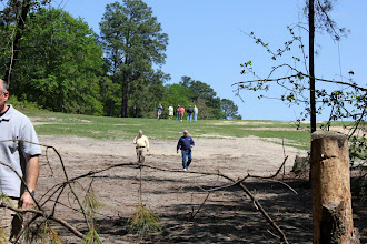 Photo: We have about 350 feet cleared down the hill and it's about another 300 to the beaver pond.