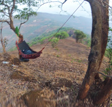 Photo: hammock