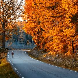 by Kennet Brandt - Transportation Roads