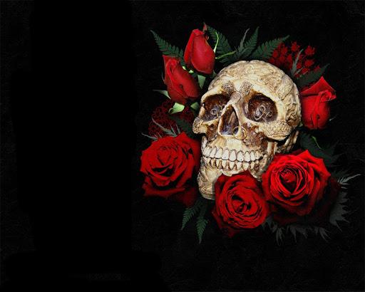 Skull Roses Live Wallpaper