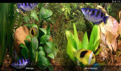Aqua 3D Pro Live Wallpaper v1.0
