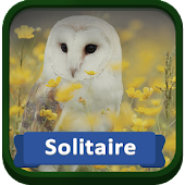 Solitaire Birds