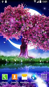 Cherry Blossom Live Wallpaper 1