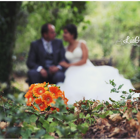 Wedding photographer Luis Gomes (luisgomesphotog). Photo of 31.08.2015