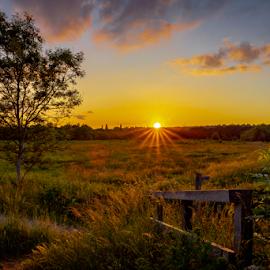 Surrey Sunset by Griff Johnson - Landscapes Sunsets & Sunrises ( tripod, for sale, surrey, sunset, hdr, tree, clouds, shalford, sun, 5dmk4, landscape, canon )