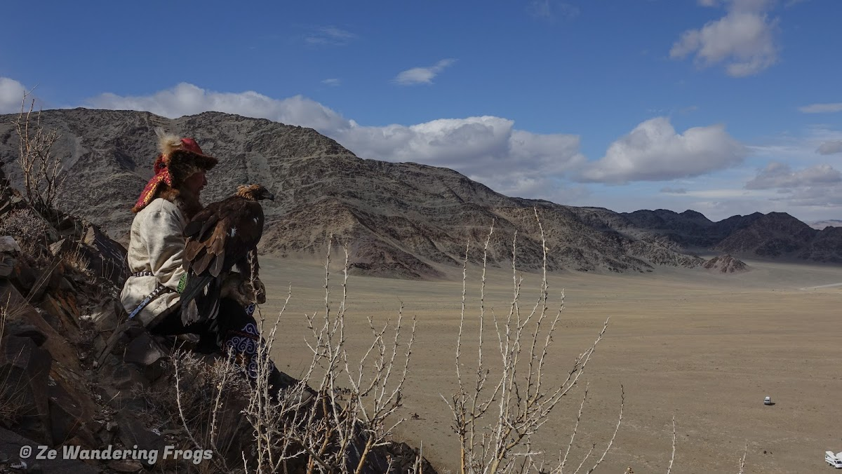 Mongolia. Golden Eagle Festival Olgii. Eagle hunter over the festival ground