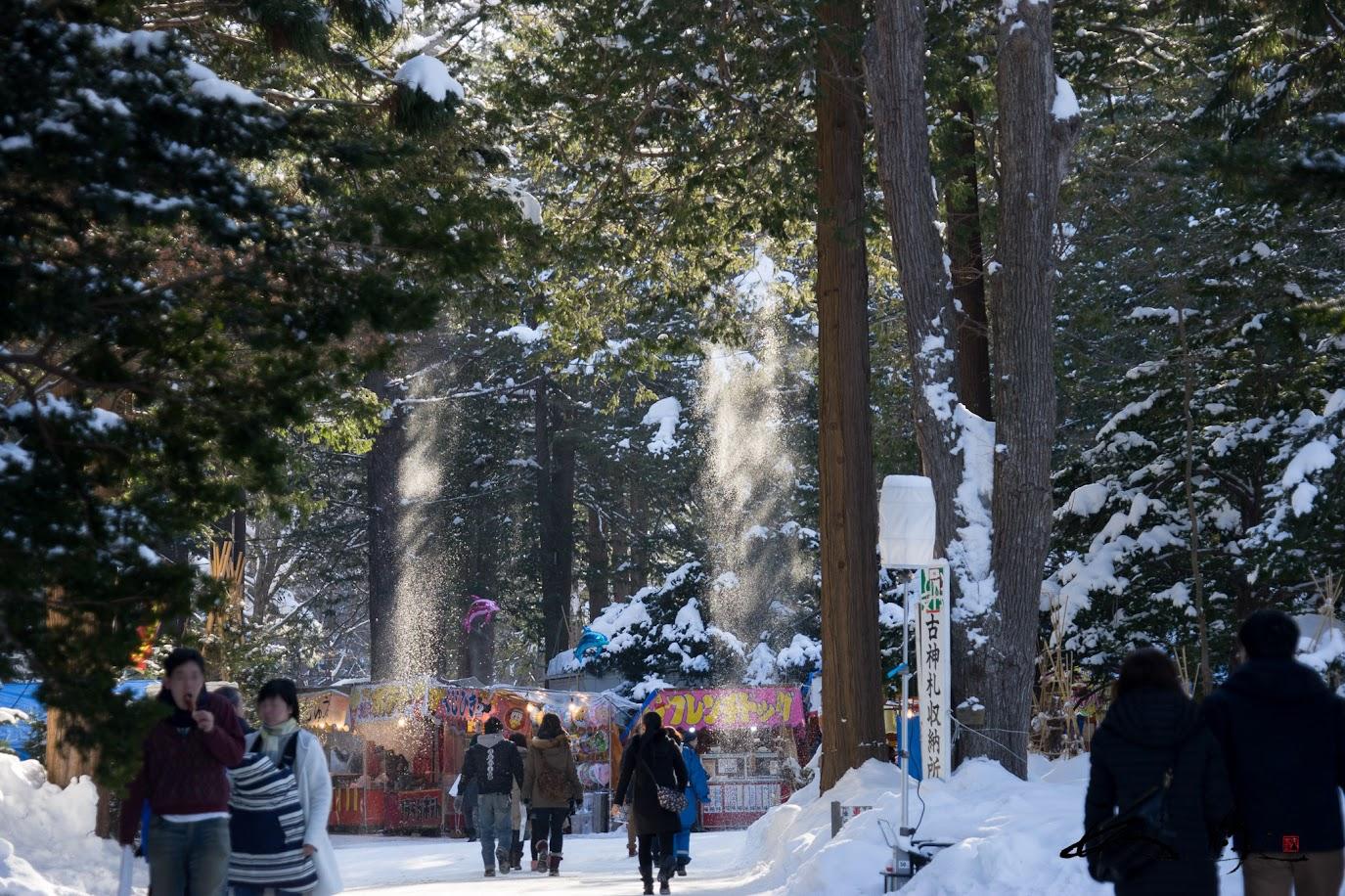 光を浴びて木漏れ日舞い散る粉雪