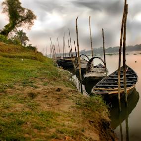 by Amritakshya Dey - Backgrounds Nature