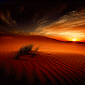 Desert Sunset Live Wallpaper icon