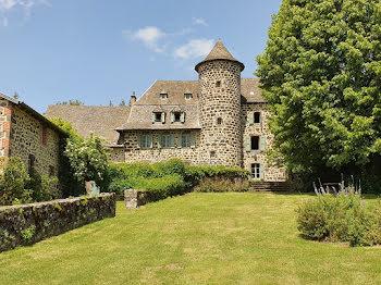château à Saint-Cernin (15)