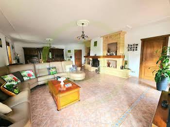 Maison 11 pièces 303 m2