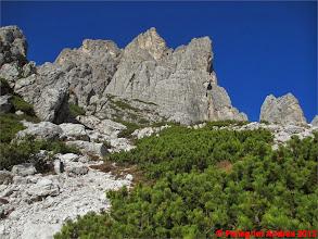 Photo: IMG_4168 voglia di arrampicare