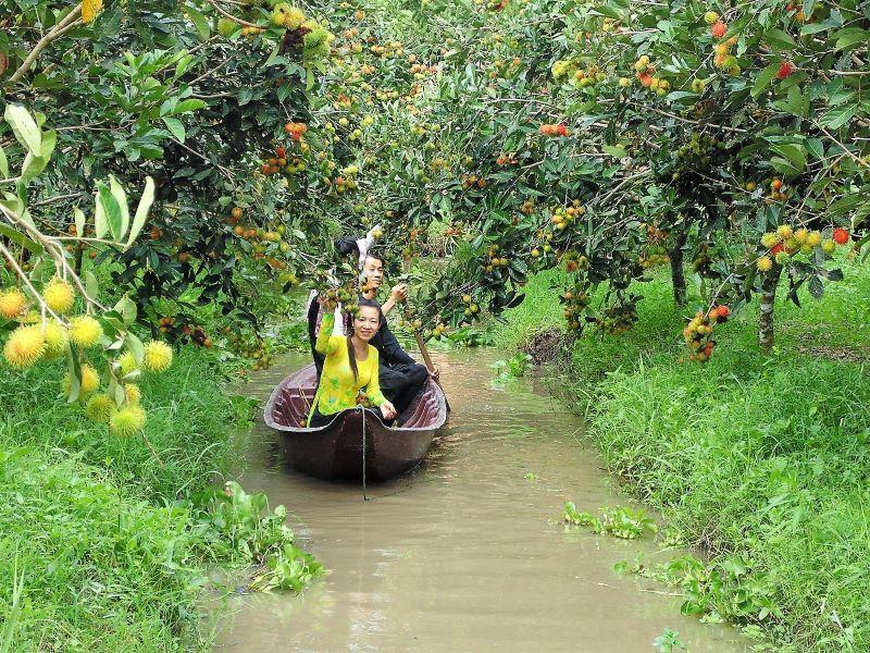 Vườn trái cây Vàm Xáng