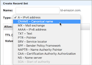CNAME - Canonical name is the type of record selected.