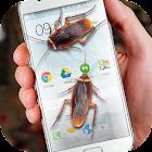 Cucaracha en Teléfono de broma icon