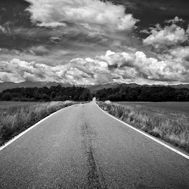 Road by Alessandro Calzolaro - Black & White Landscapes ( clouds, black and white, travel, road, landscape )