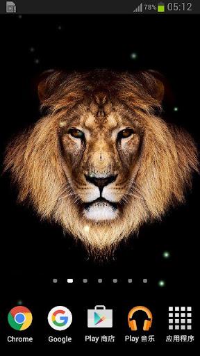 ライオンライブ壁紙