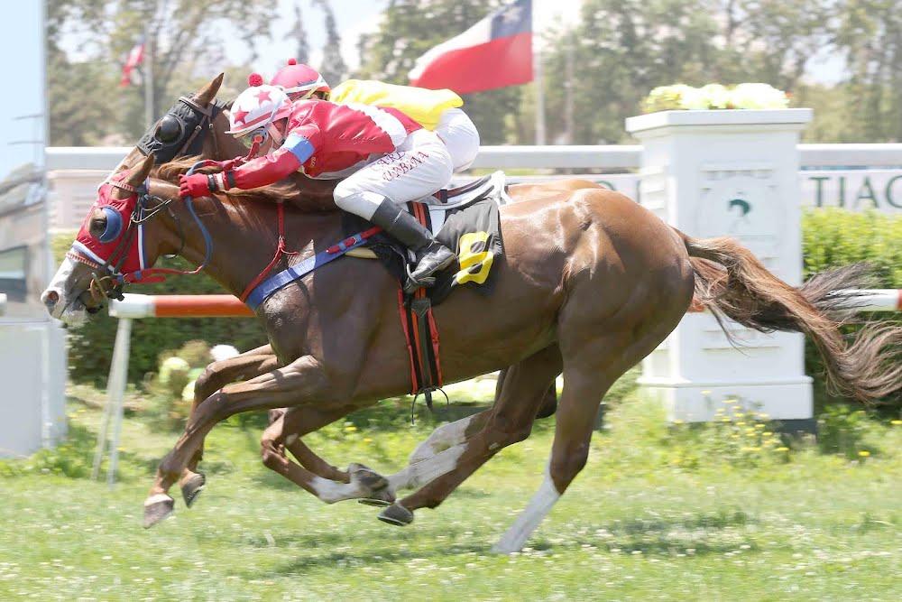 Aslan (Diamond Tycoon) se quedó con la victoria en Condicional (1000m-Pasto-CHS).