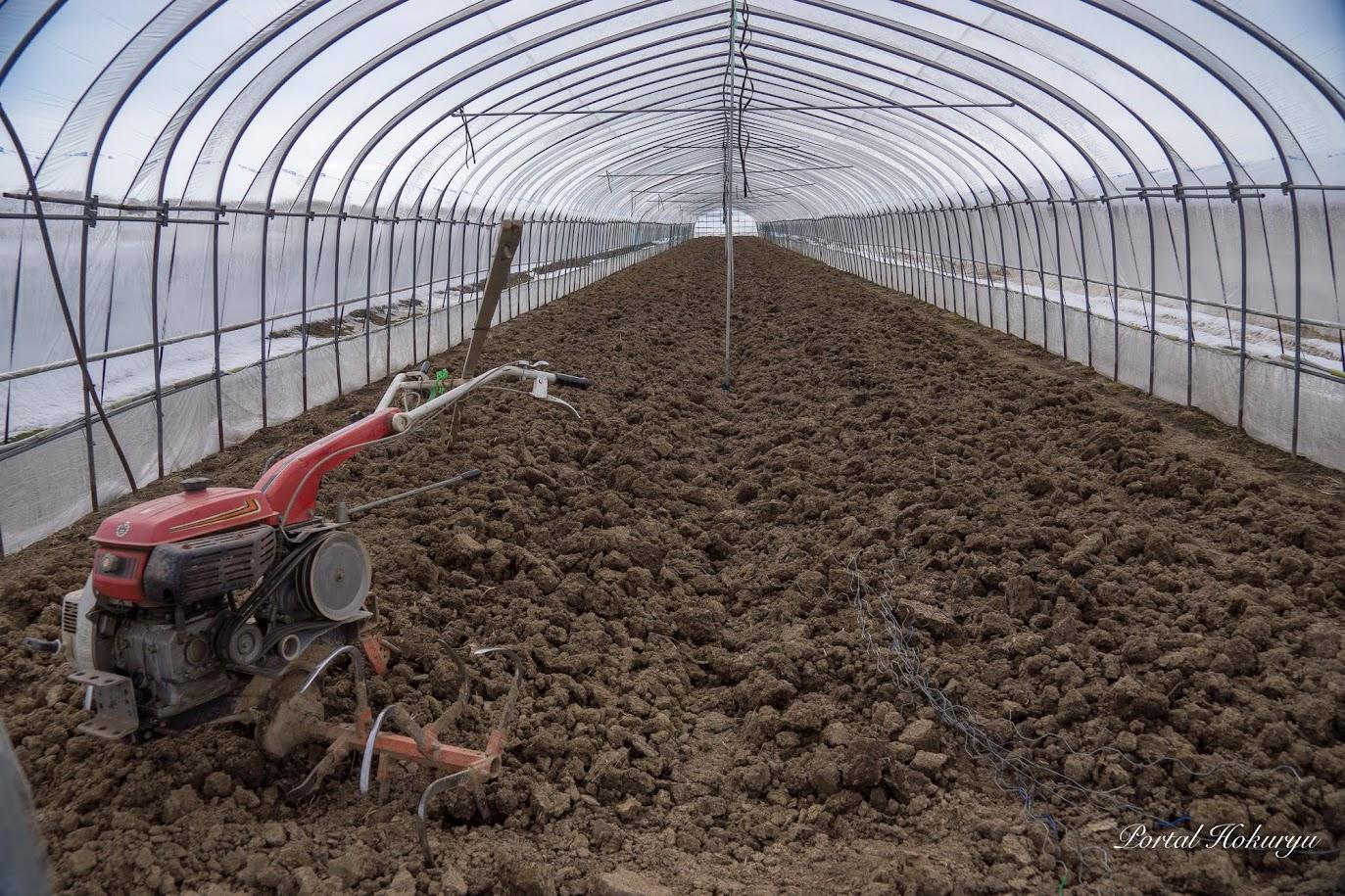 メロンハウス5棟(黄美香1棟)の土壌整備が引き続き行なわれます