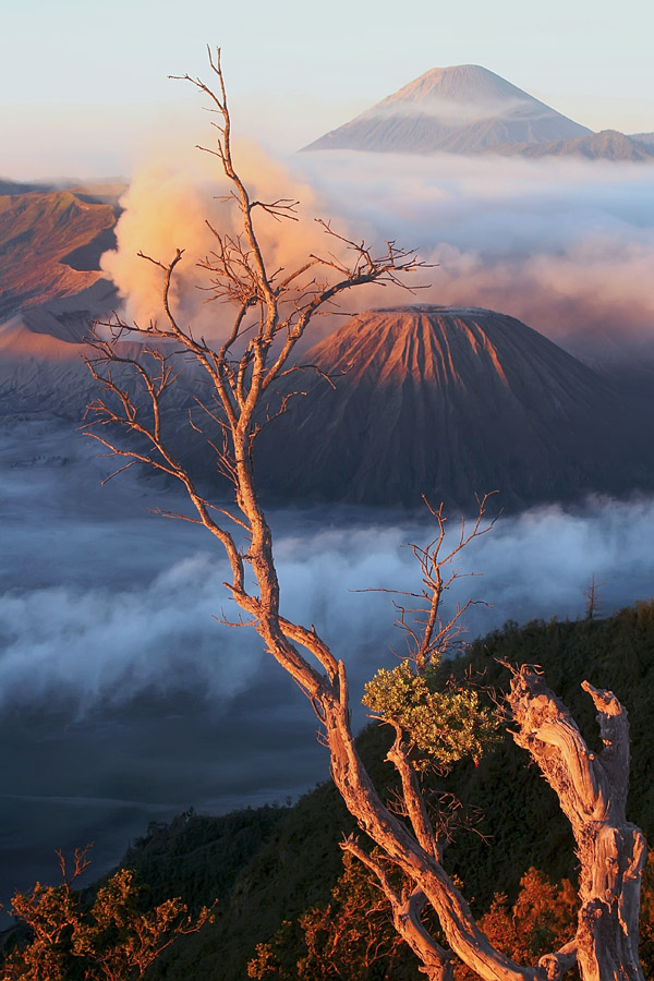 ::bromo:: by Bayu Dwivayana - Landscapes Mountains & Hills