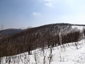 Photo: 21.Szczawnik (1098 m).