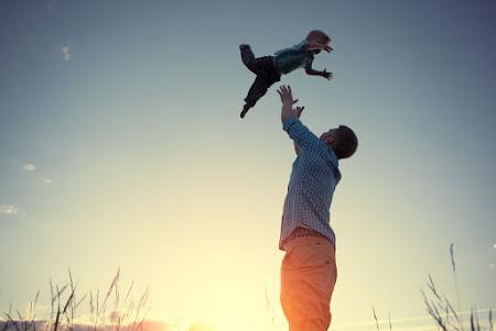 Familierecht - Echtscheidingsrecht - Erfrecht