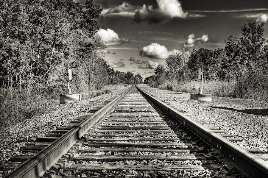 Track to infinity by Michael Stuart - Transportation Trains