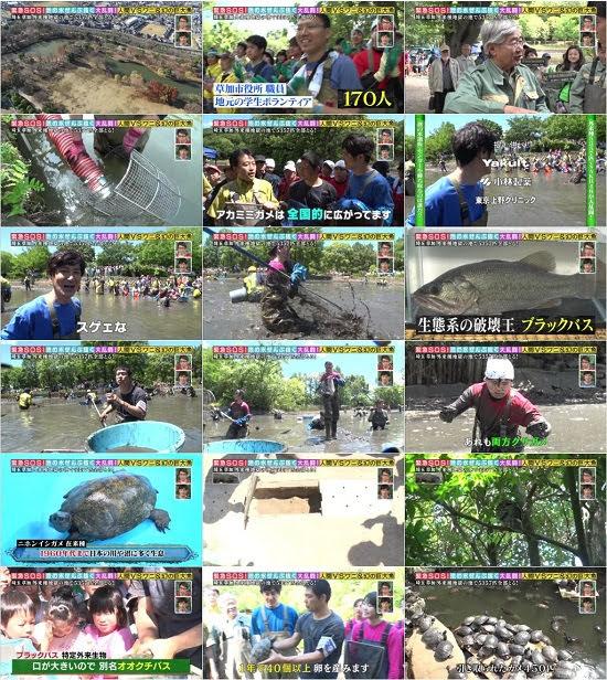 (TV-Variety)(720p) Kinkyu SOS! Ike no Mizu Zenbu Nuku Daisakusen (AKB48 part) 180624