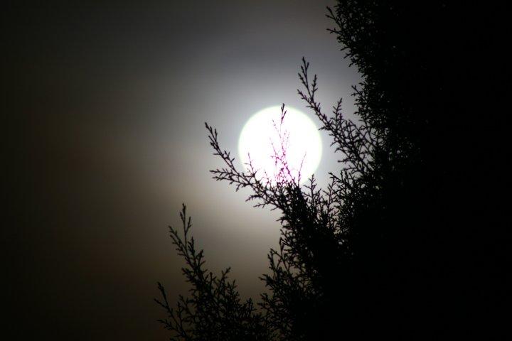 Luna... di gegge
