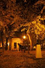 Photo: Montreal park at night.