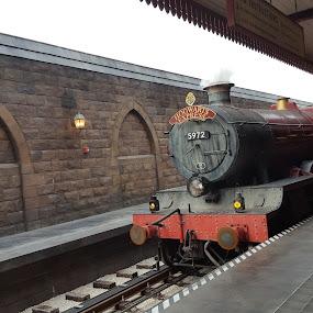 Hogwards Express by Riddhima Chandra - Transportation Trains ( harrypotter, railway, tracks, train, monorail,  )