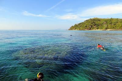 Island Hopping to Phi Phi & Bamboo Island by Singthongchai Speed Boat from Koh Lanta