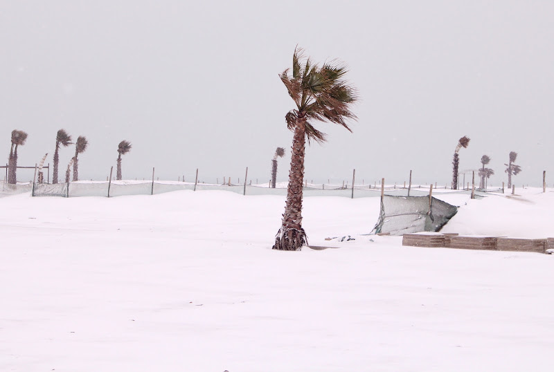 Mare d'inverno  di caterina_kitta