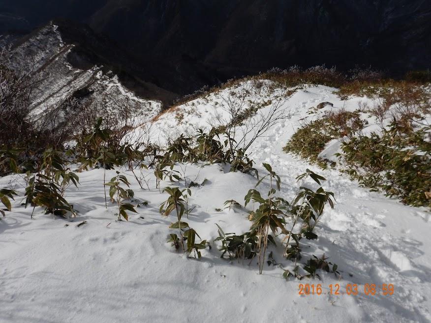 Mt. Tanigawa-Bateikei thumbnails No.7