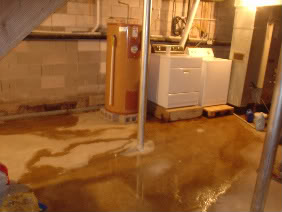 damp basement quick guide to diagnosing and controlling moisture