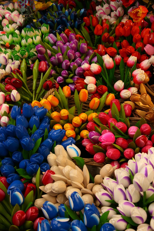 Amsterdam e i suoi tulipani di letiziacaprettiphotography