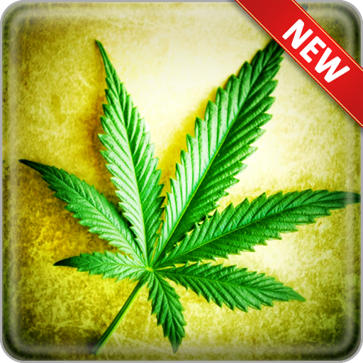 App Insights Weed Wallpapers