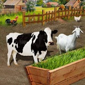 Animal Farm Fodder Growing