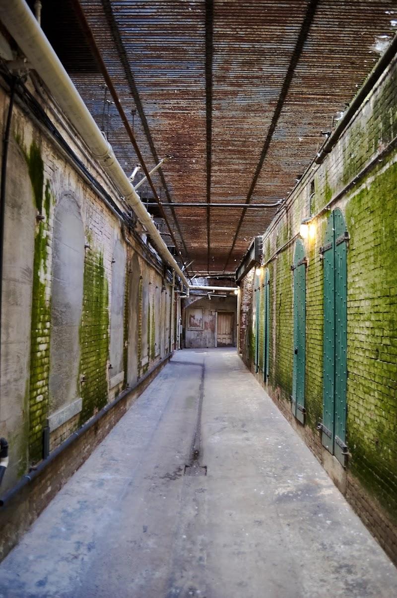 Alcatraz di Tita_86