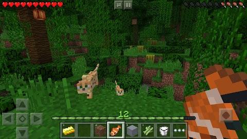 Minecraft: Pocket Edition Screenshot 4