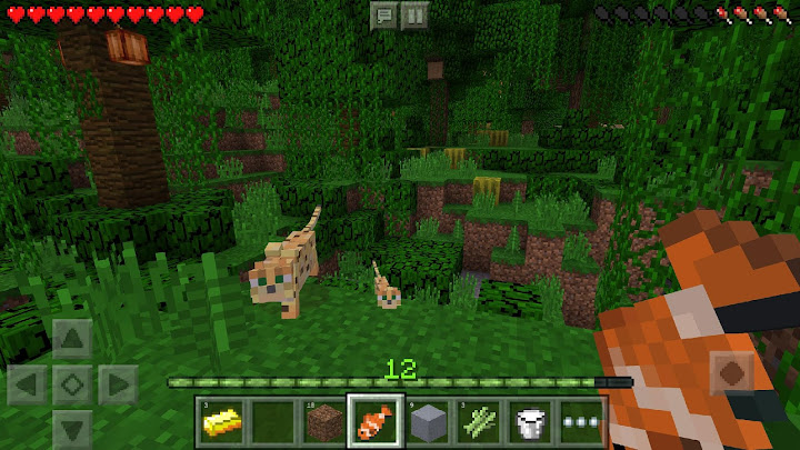 Minecraft Android App Screenshot