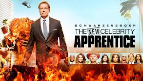 The New Celebrity Apprentice thumbnail