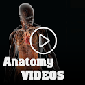 Medical Anatomy Videos icon