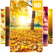 Autumn Wallpapers