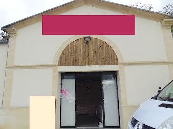 locaux professionnels à Saint-André-de-Cubzac (33)