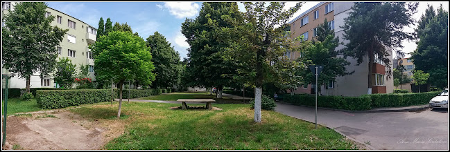 Photo: Calea Victoriei,  Nr: 19, 21 - 2017.06.07